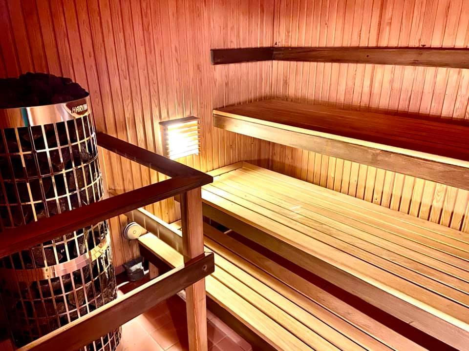 DGC sauna kiuas
